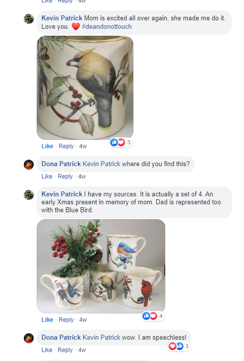 Screenshot of FB conversation. Kevin: Mom is excited all over again, she made me do it. Love you. Me: Where did you find this? Kevin: I have my sources. It's actually a set of 4. An early Xmas present in memory of mom. Dad is represented too with the blue bird. Me: I am speechless!